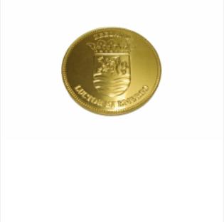 Zeeuwse knop medaillon met Zeeuws wapen