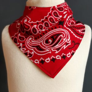 Kwijldoekje zakdoek rood design